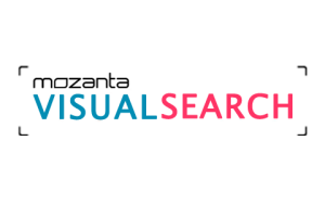 Mozanta Visual Search - Monthly